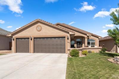 Pueblo CO Single Family Home For Sale: $325,000