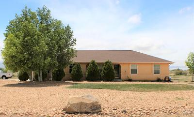 Pueblo West Single Family Home For Sale: 1444 E Farley Ave