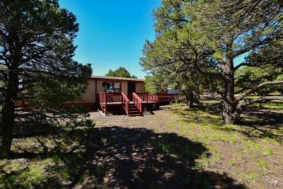 Walsenburg CO Single Family Home For Sale: $200,000