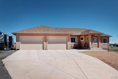 Pueblo West Single Family Home For Sale: 1249 W Caida Del Sol Dr