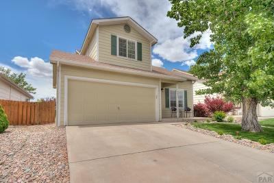 Pueblo Single Family Home For Sale: 5033 Pioneer Place