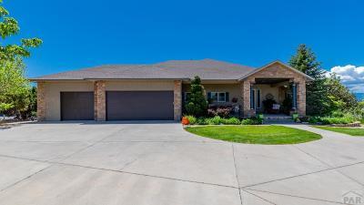 Pueblo West, Pueblo, 81005 Pueblo Co Single Family Home For Sale: 322 S Tejon Lane