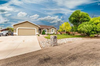 Pueblo West Single Family Home For Sale: 514 S Pin High Ct