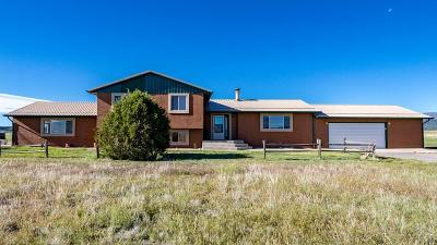 Pueblo Single Family Home For Sale: 8412 W State Hwy 96