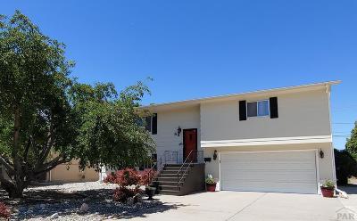 Pueblo Single Family Home For Sale: 85 Radcliff Lane