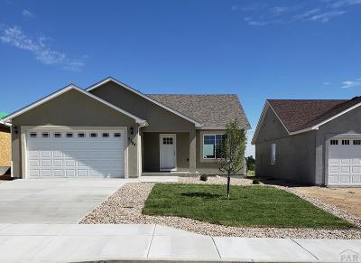 Pueblo Single Family Home For Sale: 3037 Candice Lane