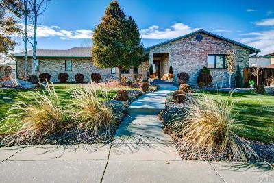 Pueblo Single Family Home For Sale: 179 Encino Pl