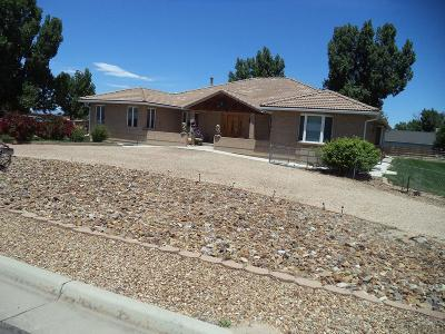 Pueblo Single Family Home For Sale: 27875 County Farm Rd