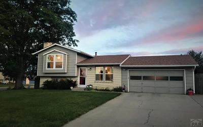 Pueblo Single Family Home For Sale: 47 Hudspeth Lane