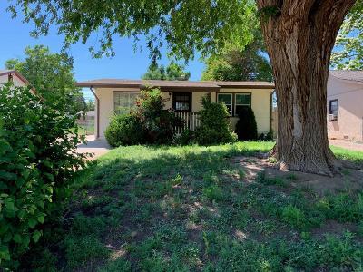 Pueblo Single Family Home For Sale: 1717 Belmont Ave
