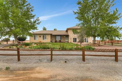 Pueblo Single Family Home For Sale: 1173 Obrien Lane