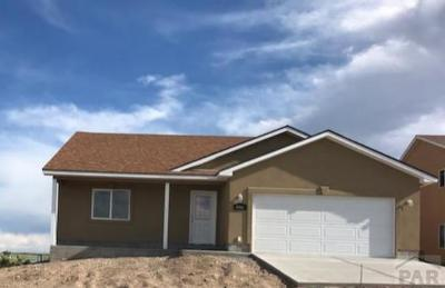 Colorado City Single Family Home For Sale: 4966 Beckwith Dr