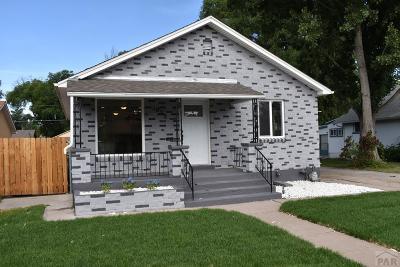 Pueblo Single Family Home For Sale: 1023 Bragdon Ave