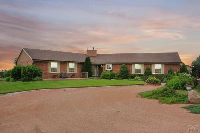 81005 Pueblo Co, Pueblo West, Pueblo Single Family Home For Sale: 1346 29th Lane