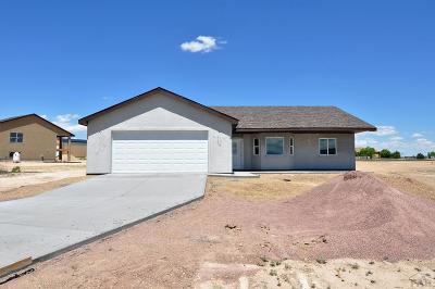 81005 Pueblo Co, Pueblo West, Pueblo Single Family Home For Sale: 949 W Stallion Dr