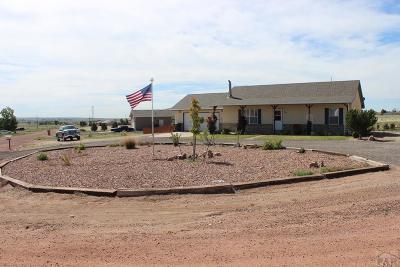 81005 Pueblo Co, Pueblo West, Pueblo Single Family Home For Sale: 934 E Kirkwood Dr
