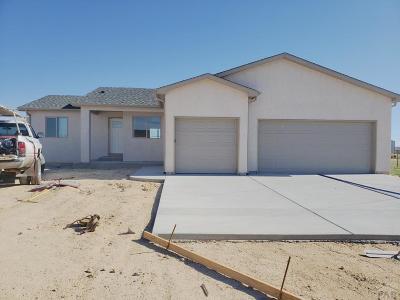 81005 Pueblo Co, Pueblo West, Pueblo Single Family Home For Sale: 1145 E Kirkwood Dr