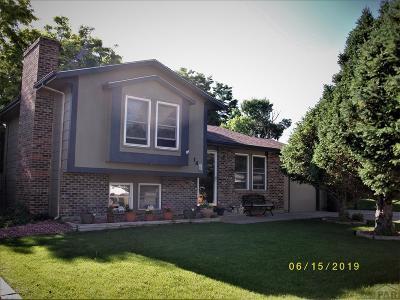 81005 Pueblo Co, Pueblo West, Pueblo Single Family Home For Sale: 14 Hudspeth Lane