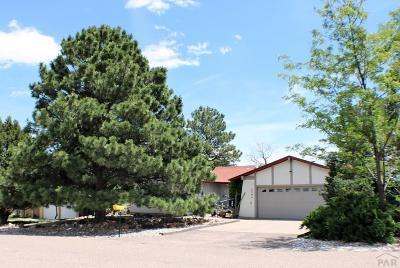 Colorado City Single Family Home For Sale: 5284 Monte Vista Dr