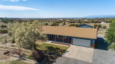 Pueblo West Single Family Home For Sale: 2052 W Woodstock Court