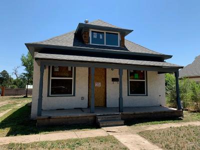 Single Family Home For Sale: 922 Bragdon Ave