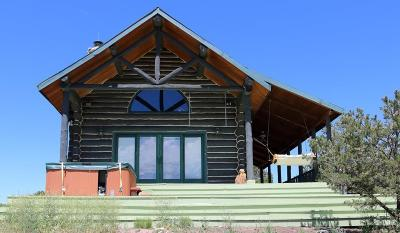 Cotopaxi CO Single Family Home For Sale: $650,000