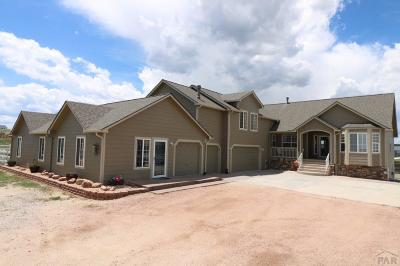 Elbert CO Single Family Home For Sale: $589,900