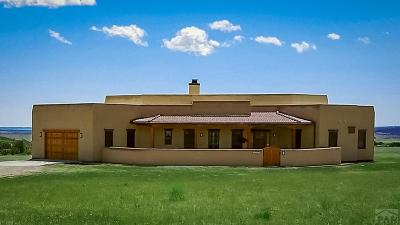 Colorado City CO Single Family Home For Sale: $500,000