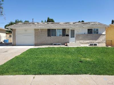 Pueblo Single Family Home For Sale: 19 Macgregor Rd