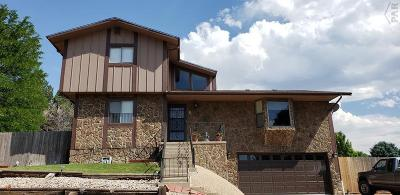 Pueblo Single Family Home For Sale: 5 Ironweed Dr