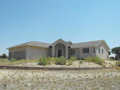Pueblo West Single Family Home For Sale: 952 S Rudioso