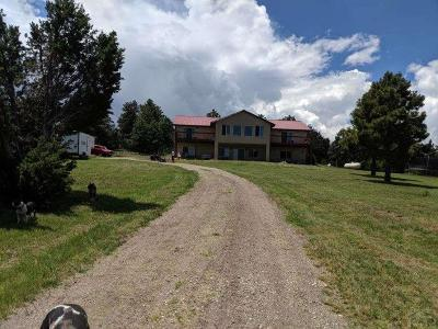 Beulah CO Single Family Home For Sale: $575,000
