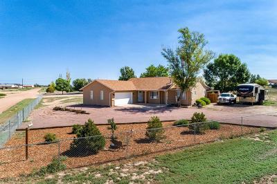 Pueblo West Single Family Home For Sale: 978 S Camino Santiago Dr