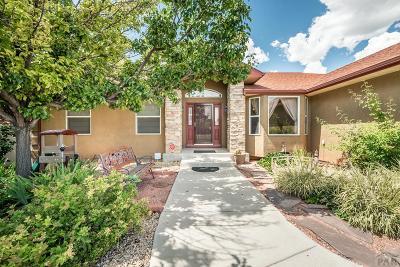 Pueblo Single Family Home For Sale: 5105 Red Cedar Court