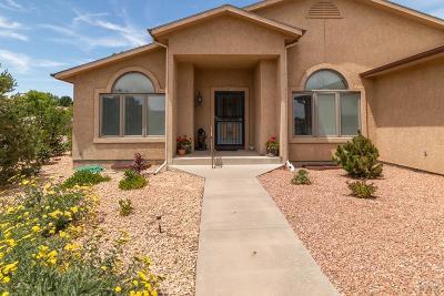 Pueblo West Single Family Home For Sale: 421 W Burke Dr