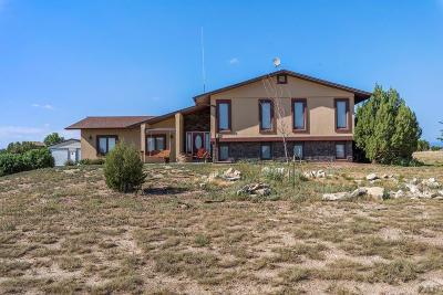 Pueblo West Single Family Home For Sale: 344 E Dee Jay Court