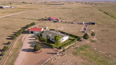 Pueblo Single Family Home For Sale: 6289 S Galbreth Rd