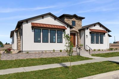 Pueblo Single Family Home For Sale: 4705 Mica St