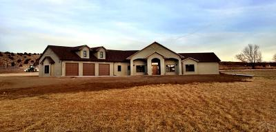 Canon City CO Single Family Home For Sale: $789,000