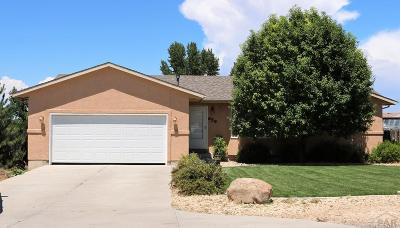 Pueblo West Single Family Home For Sale: 659 S Song Sparrow Dr