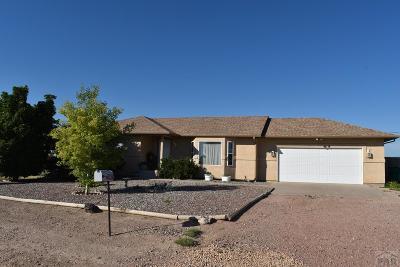 Pueblo West Single Family Home For Sale: 642 E McClave Dr