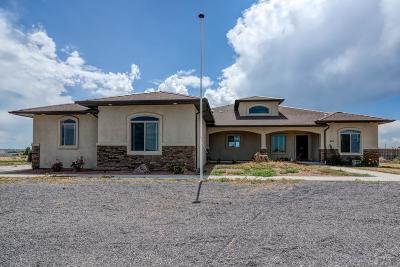 Pueblo West Single Family Home For Sale: 463 N Glendevey Dr