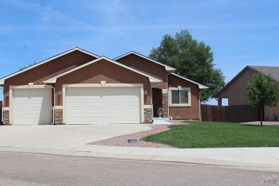 Pueblo Single Family Home For Sale: 5924 Harper Ln