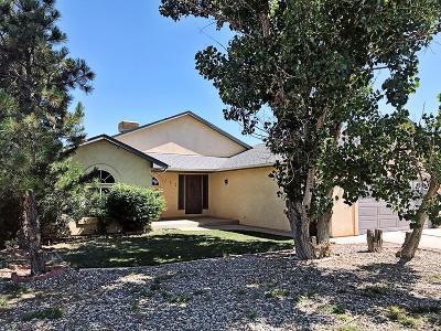 Pueblo West Single Family Home For Sale: 711 W Kenosha Dr