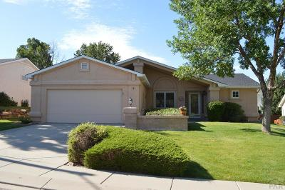 Pueblo Single Family Home For Sale: 4 Brave Eagle Court
