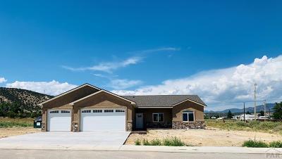 Single Family Home For Sale: 621 Rock Ridge Loop