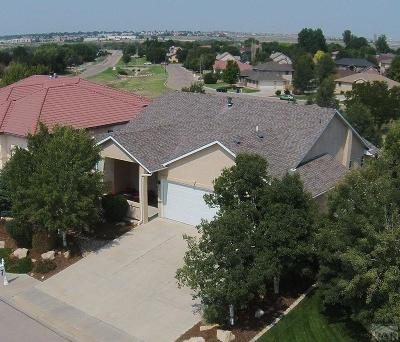 Pueblo Single Family Home For Sale: 4723 Desert Candle Dr