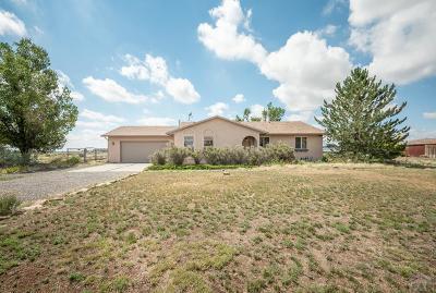 Pueblo West Single Family Home For Sale: 832 E Hayden Dr