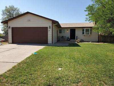University Park Single Family Home For Sale: 15 Mayweed Court