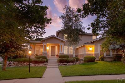 Single Family Home For Sale: 2432 Willow Glen Dr